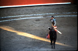 Bullfight Mazatlan Mexico