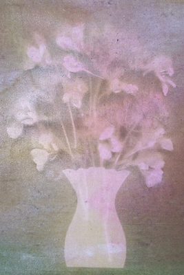 Product picture still life sunprint