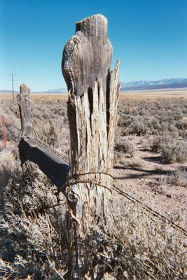 Product picture Old Western Fence Post, NV