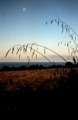 Product picture Moonrise Santa Cruz CA